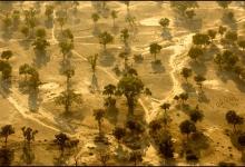 French West Africa-Burkina Faso from 1500 feet: Birkina No. 8