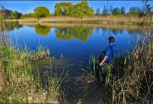 Toronto's Iconic High Park: Grenadier Pond No. 10