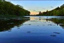 Toronto's Iconic High Park: Grenadier Pond No. 1