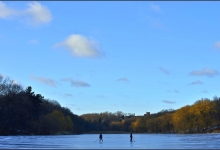 Toronto's Iconic High Park: Grenadier Pond No. 3